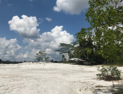 Tourism a Strategy for Sustainable Development and Economic Growth in Belitung Island, Indonesia
