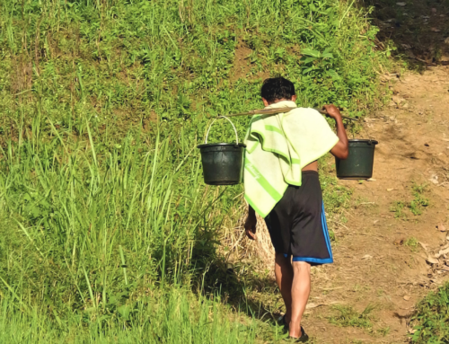 The right to water: governing private and communal provision in rural Indonesia. New Mandala (October 29, 2020)